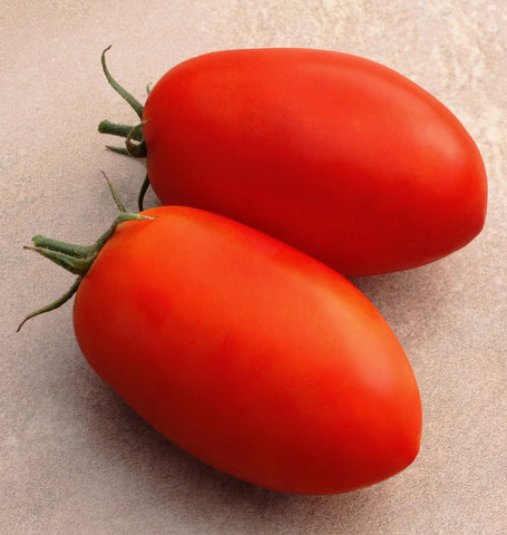 Optimax Roma Tomato Seeds