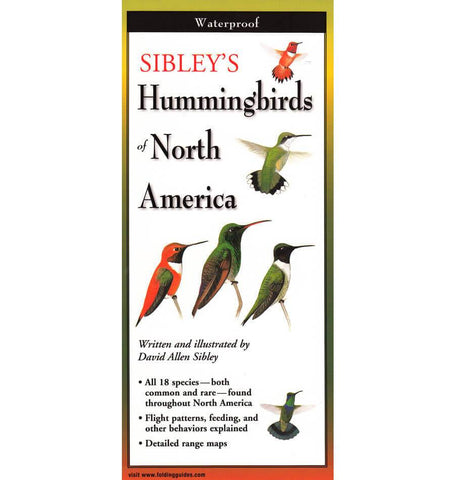 Hummingbirds of North America ZBK138A