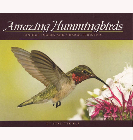 Amazing Hummingbirds Book