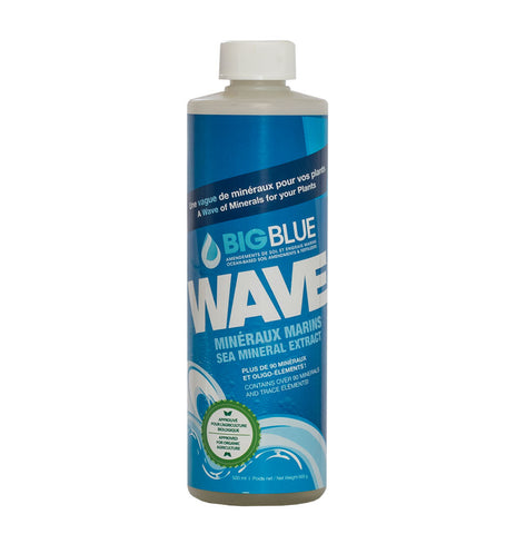 Big Blue Wave 500mL