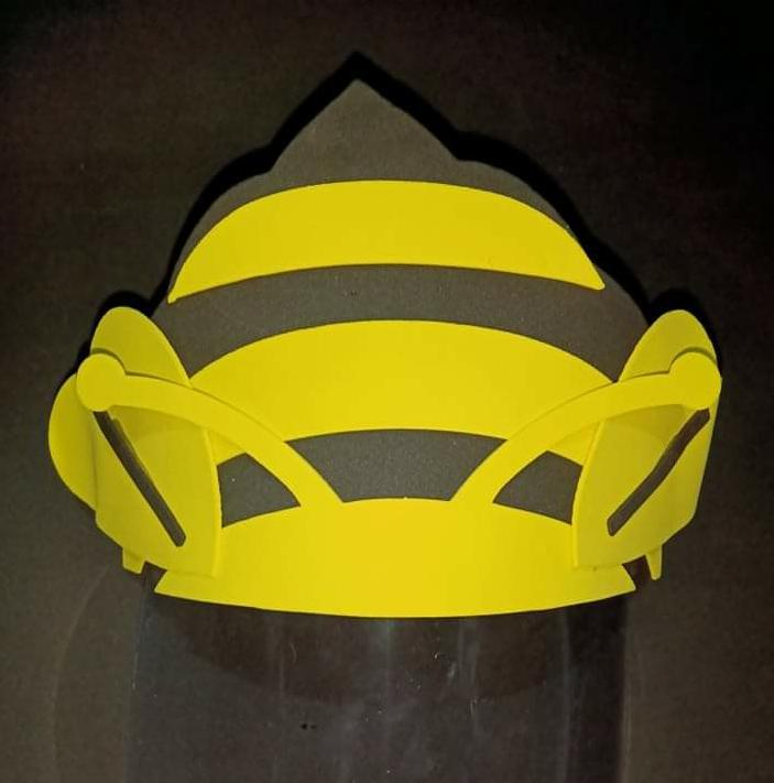 Character Faceshield for Kids