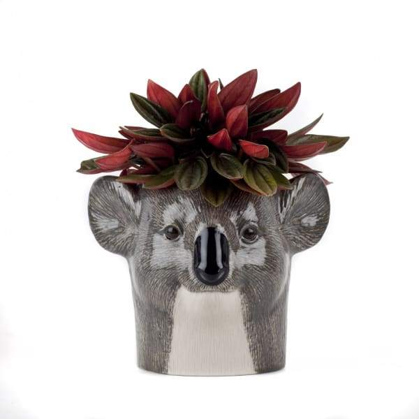 Koala Ceramic Pencil Or Flower Pot by Quail Ceramics