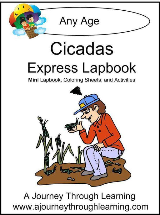 Cicadas Express Lapbook - A Journey Through Learning Lapbooks