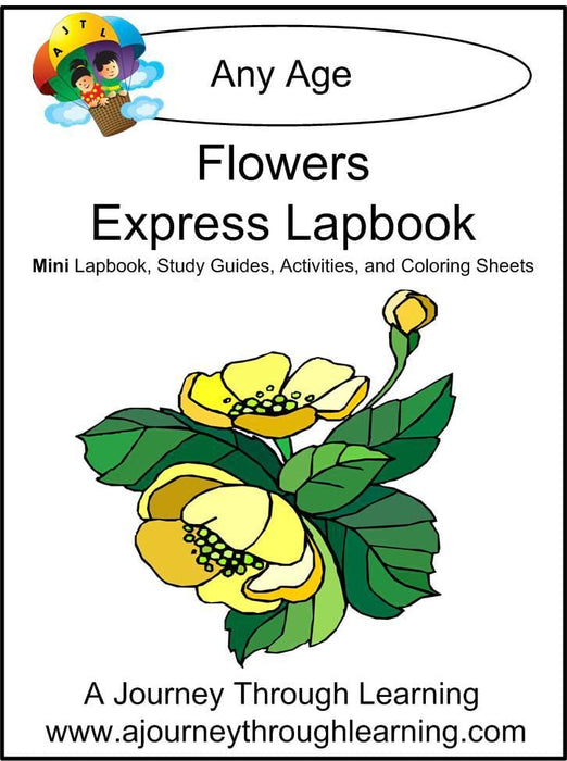 Flowers Express Lapbook | A Journey Through Learning Lapbooks