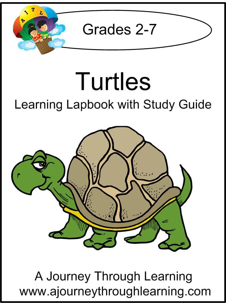 Turtles Lapbook with Study Guide - A Journey Through Learning Lapbooks