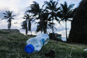 Plastic Waste: A Global Problem That Must Be Addressed