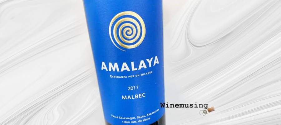 Wine Review: Amalaya Malbec 2017