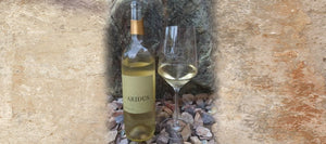 A Possible Pour Wine Review: Tasting Aridus 2016 Sauvignon Blanc