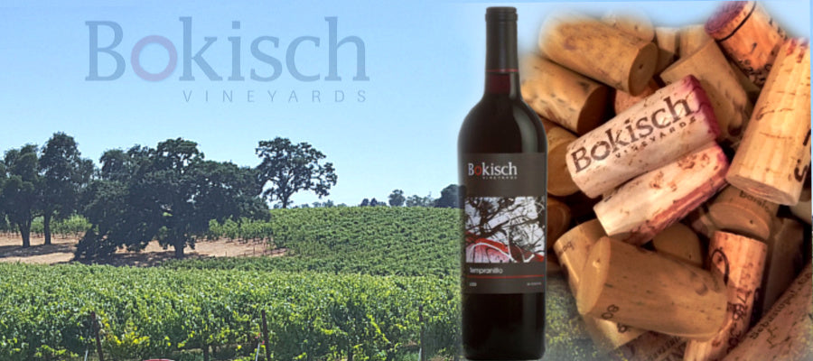 Wine Review - Bokisch 2015 Tempranillo