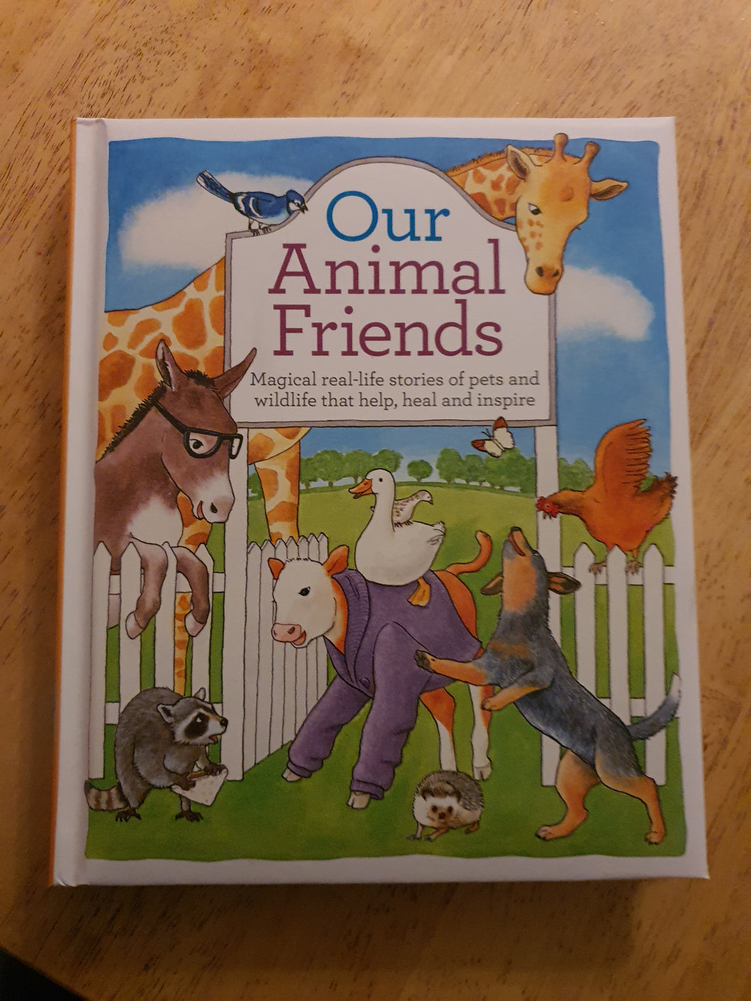 Our Animal Friends Book