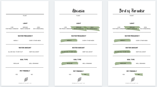 Plant Care Cards (Free Digital Download)