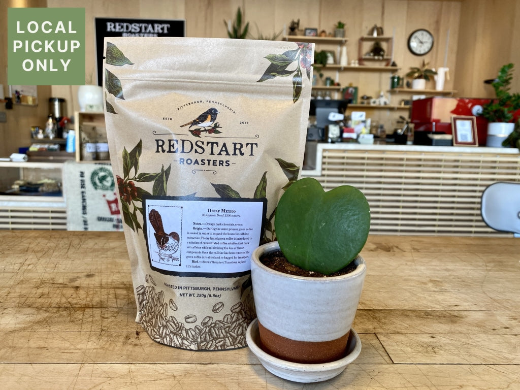 Mothers Day Coffee & Plant Bundle [Preorder] Decaf Mexico