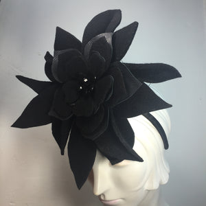 Black Beauty - AnneDePasquale