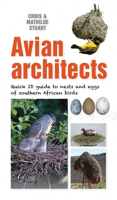 Avian Architects: Quick ID guide to nests and eggs of southern African birds by Chris & Mathilde Stuart (Expected Jan 2021)