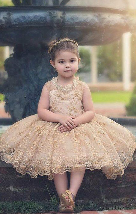 Cute Baby Tutu Dresses for Weddings Gold Appliques Communion Flower Girl Dress,BD99753