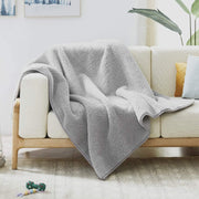 Allisandro Waterproof Dog Blanket Light Grey