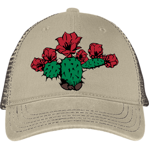Desert Rose District Mesh Back Cap