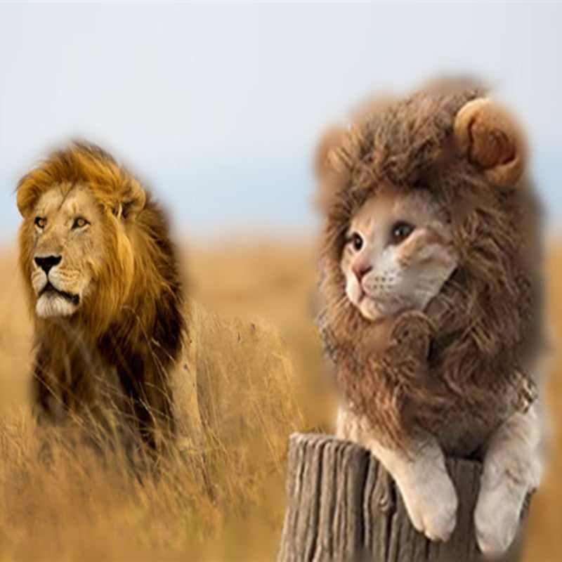 New Pet Hat Costume Lion Mane Cat Wig Halloween Dress Up With Ears Pet Hat Lion Mane Wig Cute Pet Costume Cosplay - Cats Dress