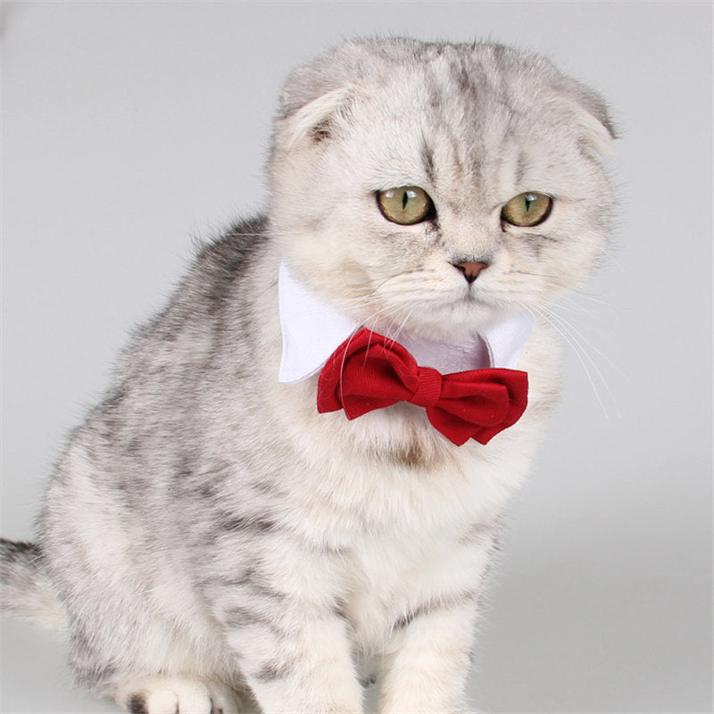 Small Dog Cat Collar Costume Bow Tie for Small Pet Puppy Shirt Neck Acessories Wedding Party Decoration Grooming Accessories