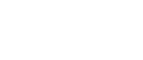 Palmetto Shirt Company