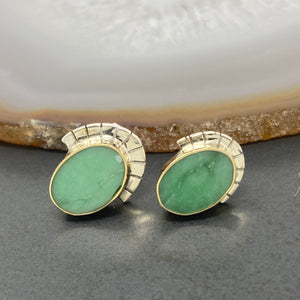 Young in the Mountains : Lucin Veriscite Vita Studs