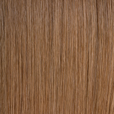 Honey Blonde (#12) Tape-In - Natural Drawn (Thin) - Aashi Beauty