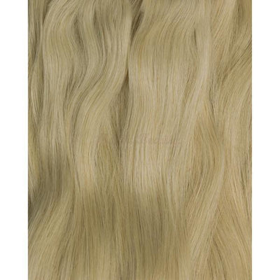 Ash Blonde (#60) Tape-In (Double Drawn THICK) - Aashi Beauty