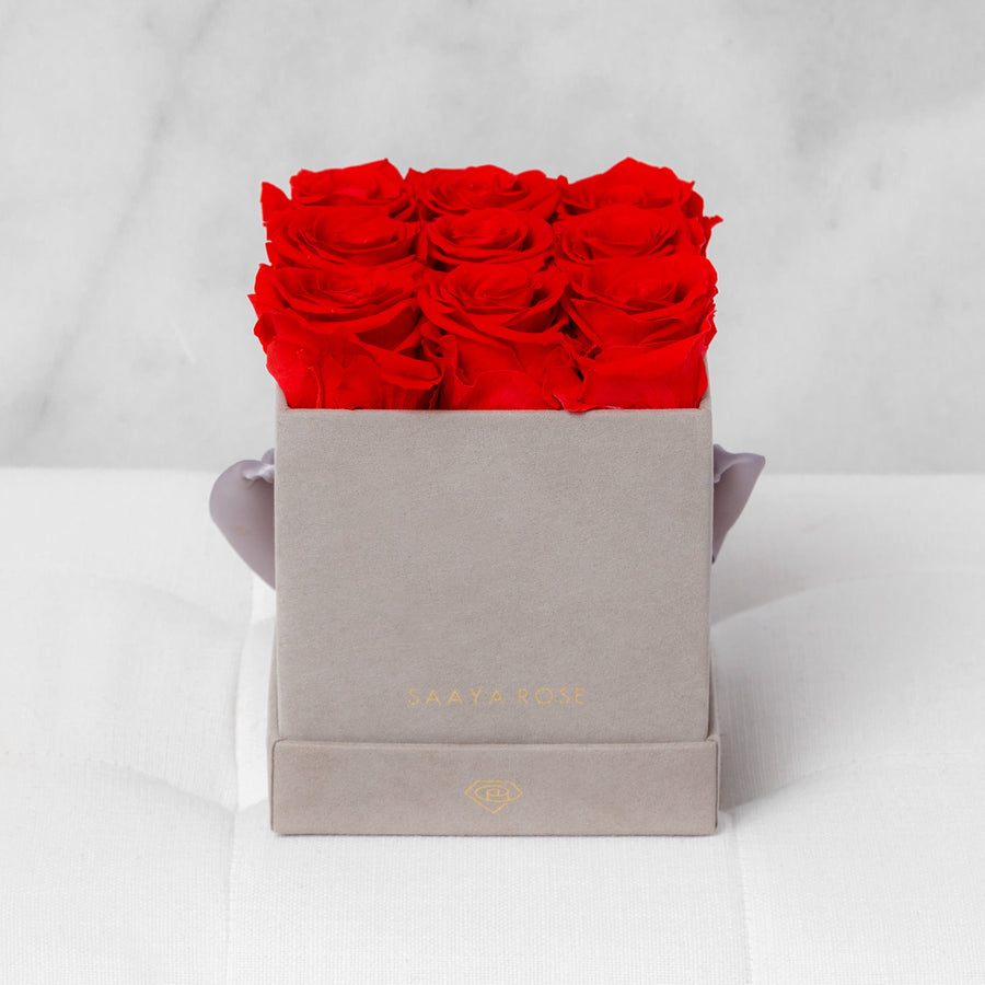 9 Rose Box - Aashi Beauty