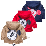 Mickey Windbreaker