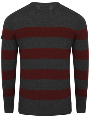 Le Shark  V-neck contrast stripe jumper in charcoal