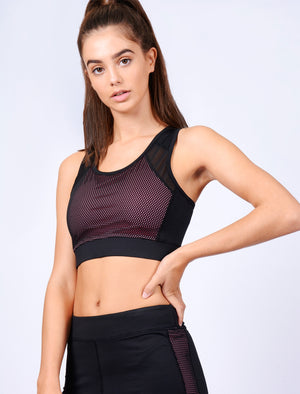 Larissa Mesh Panel  Sports Bra Top in Black – Tokyo Laundry Active