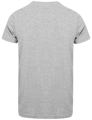 Bro Brooklyn Graphic Motif Cotton T-Shirt In Light Grey Marl - Dissident