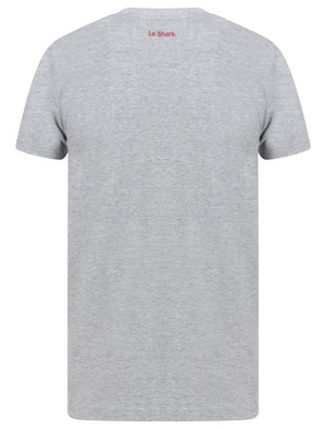 Ormsby Striped Colour Block Cotton T-Shirt In Light Grey Marl – Le Shark