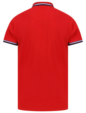 Waterloo Cotton Pique Polo Shirt with Tipping In Scarlet Sage - Le Shark
