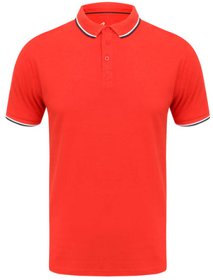 Rocky Bay Classic Cotton Pique Polo Shirt with Tipping In Red - South Shore