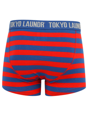 Arlo (2 Pack) Striped Boxer Shorts Set in Barados Cherry / Light Grey Marl – Tokyo Laundry