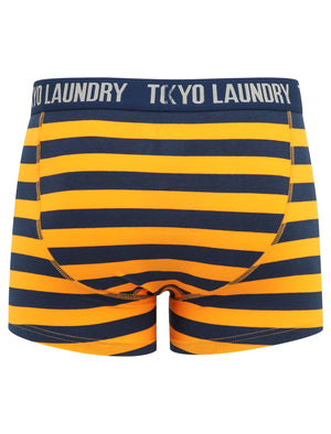 Arlo (2 Pack) Striped Boxer Shorts Set in Zinna Orange / Light Grey Marl - Tokyo Laundry