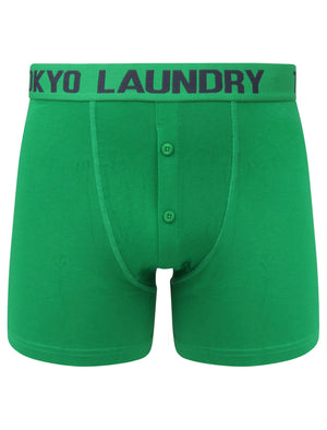 Edward (2 Pack) Boxer Shorts Set in Jolly Green / Mood Indigo - Tokyo Laundry