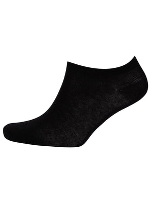 Hidden Crowe (3 Pack) Basic Cotton Rich Trainer Socks in Black – Tokyo Laundry