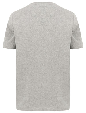 Santa Monica Applique Motif Cotton Jersey T-Shirt In Light Grey Marl – Tokyo Laundry