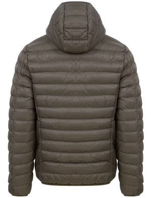 Vizzini Quilted Puffer Jacket with Hood in Khaki - Tokyo Laundry