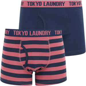 Arley (2 Pack) Striped Boxer Shorts Set in Heather Rose / Medieval Blue – Tokyo Laundry