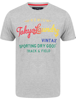 Candyshop Ombre Motif Cotton Jersey T-Shirt In Light Grey Marl - Tokyo Laundry