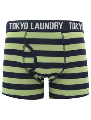 Needham (2 Pack) Striped Boxer Shorts Set in Green Eyes / Light Grey Marl – Tokyo Laundry
