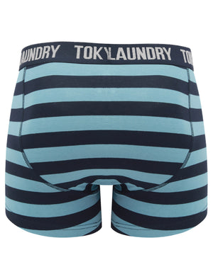 Needham (2 Pack) Striped Boxer Shorts Set in Niagara Falls Blue / Light Grey Marl – Tokyo Laundry