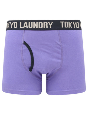 Neville 2 (2 Pack) Striped Boxer Shorts Set in Baja Blue / Sky Captain Navy – Tokyo Laundry