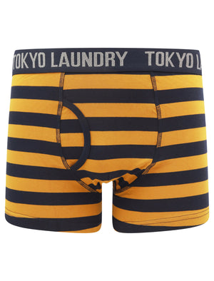 Nicholson (2 Pack) Striped Boxer Shorts Set in Buckthorn Brown / Sky Captain Navy – Tokyo Laundry