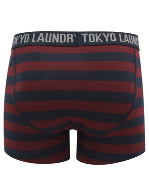 Nicholson (2 Pack) Striped Boxer Shorts Set in Port Royale / Sky Captain Navy – Tokyo Laundry