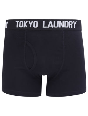 Oceana 2 (2 Pack) Boxer Shorts Set in Peach / Light Grey Marl – Tokyo Laundry