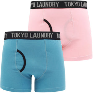 Oldfield (2 Pack) Boxer Shorts Set in Coral Cloud / Niagara Falls Blue – Tokyo Laundry